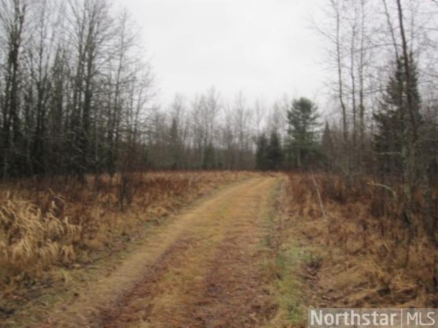 E2SW&NWSE County Road 149, Good Hope Twp, Squaw Lake