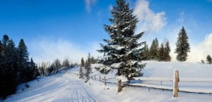 things-to-think-about-when-you-are-looking-for-property-in-the-winter-702x336