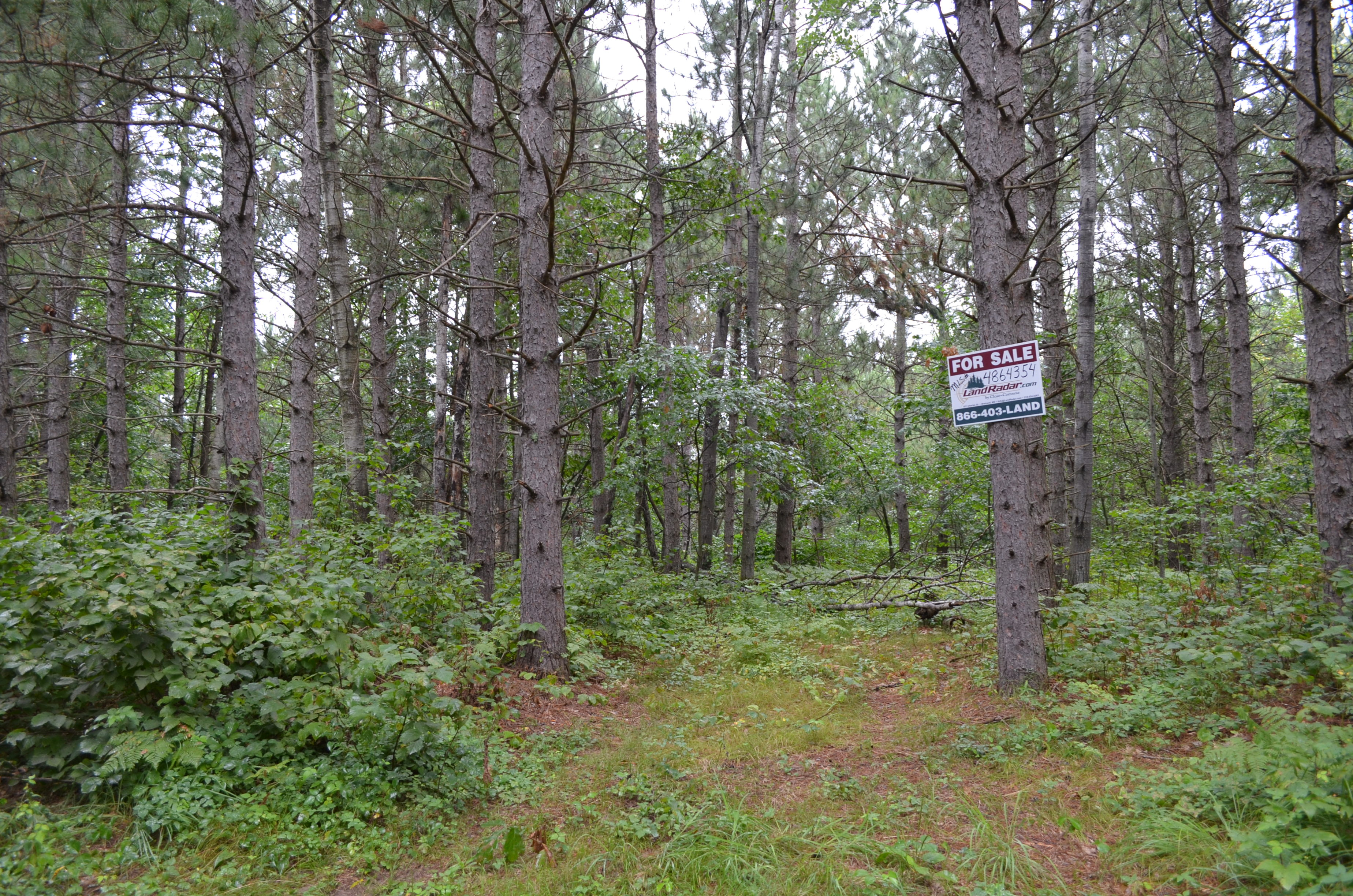 TractB Hartley Lake Road, First Assessment Twp, Brainerd