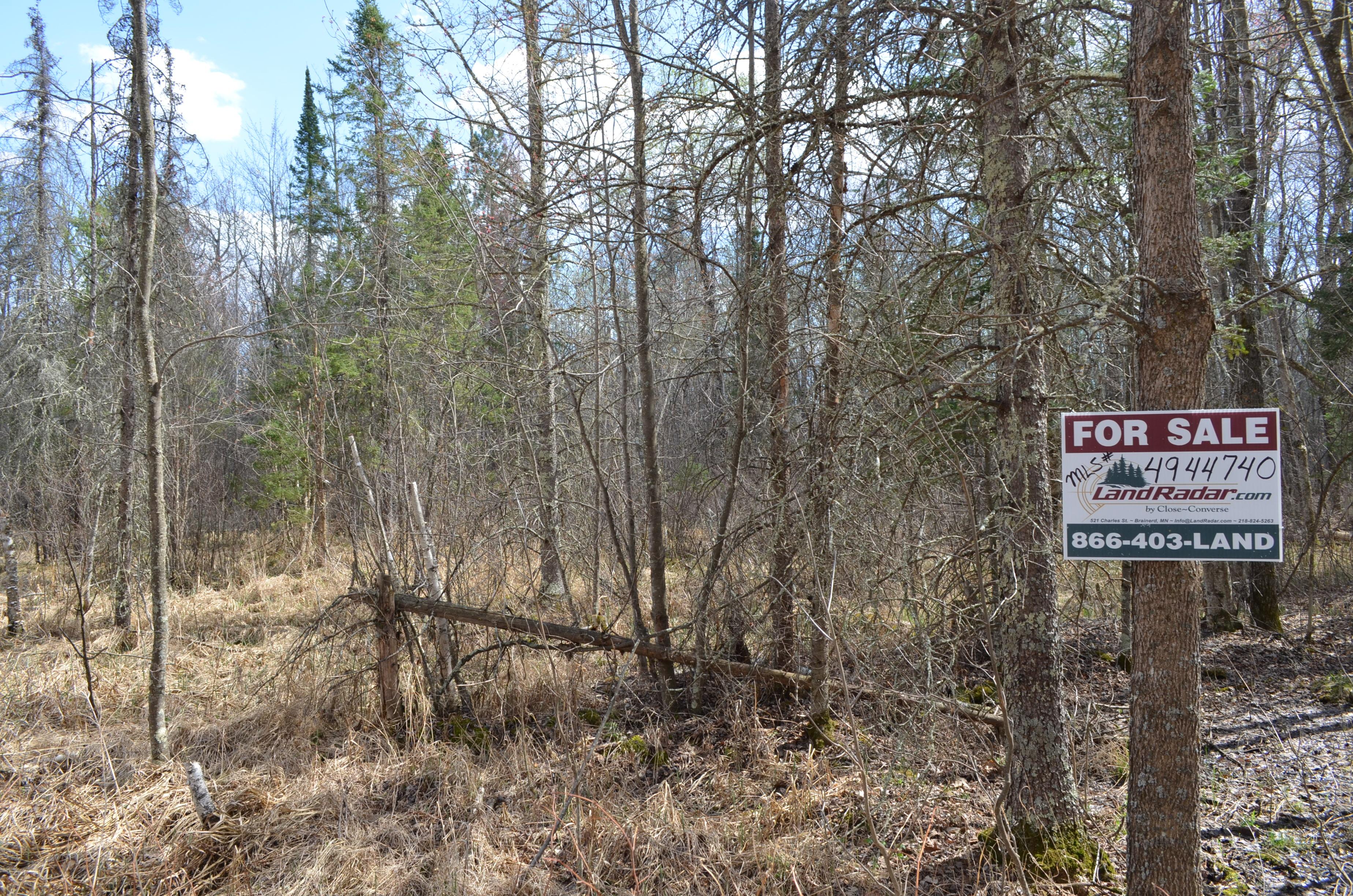 NENE&SENE Lens Rd, Ross Lake Twp, Aitkin