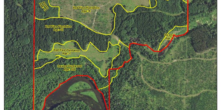 Wadena Lyons 1363314 GL1(NWSW) Pt NESW lying NW of creek