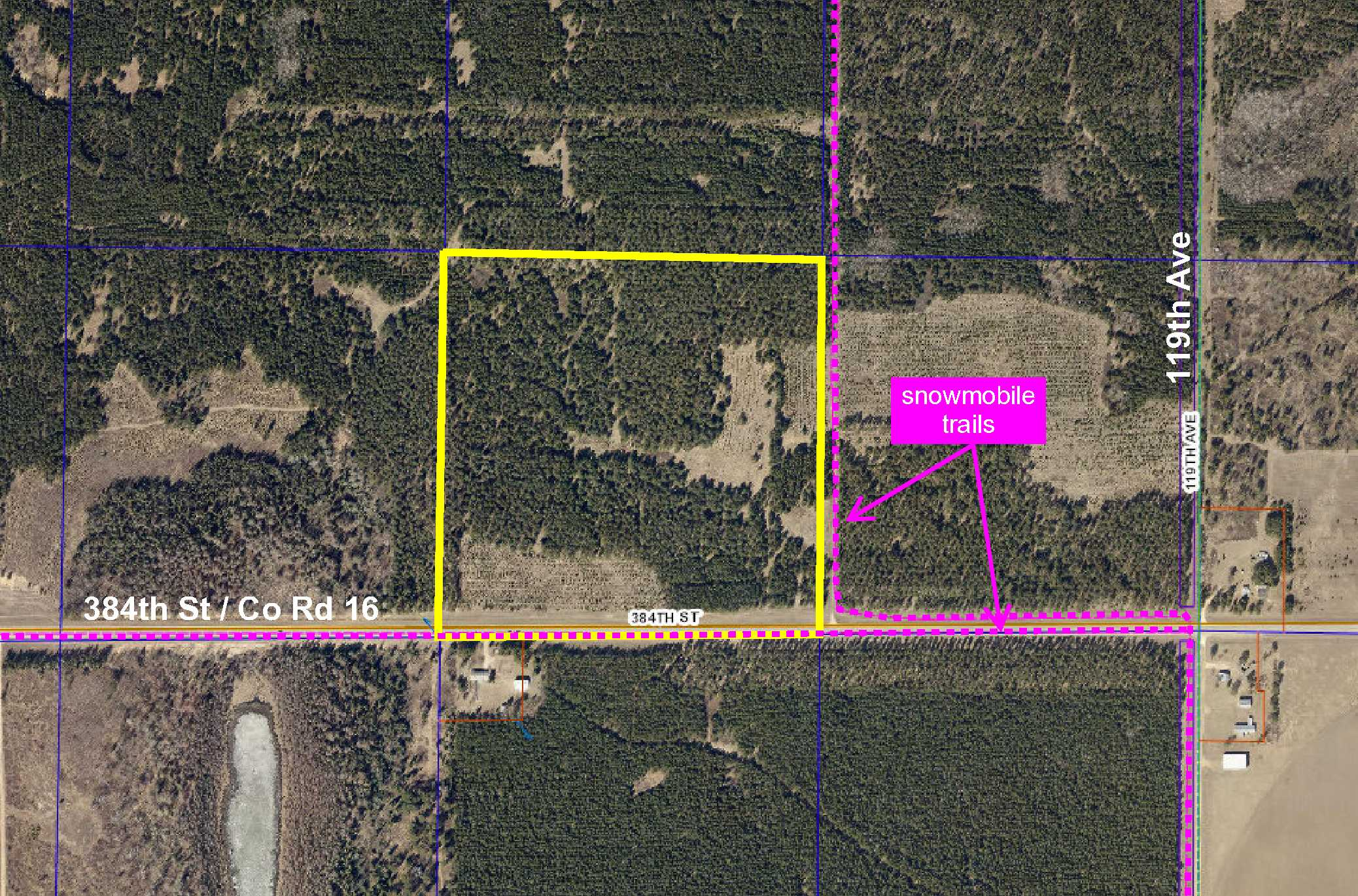 SWNE 384th St (Co Rd 16), Blueberry Twp, Menahga