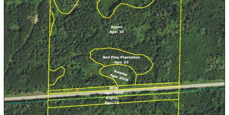 Timber Map 1423706SENW