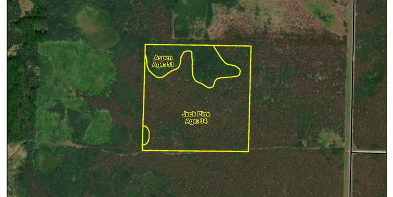 3- Timber Cover Map SWSE