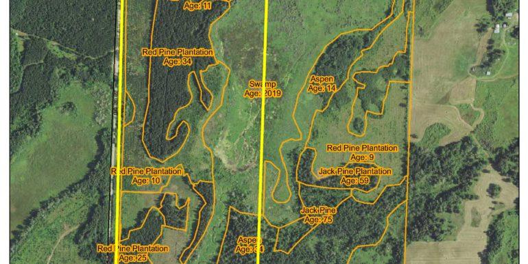 6-CC Map,CAS,Byr,1353204,GL4&SWNW