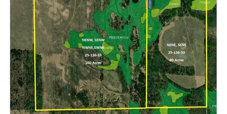 4-Wetland,WAD,Lyo,1363325