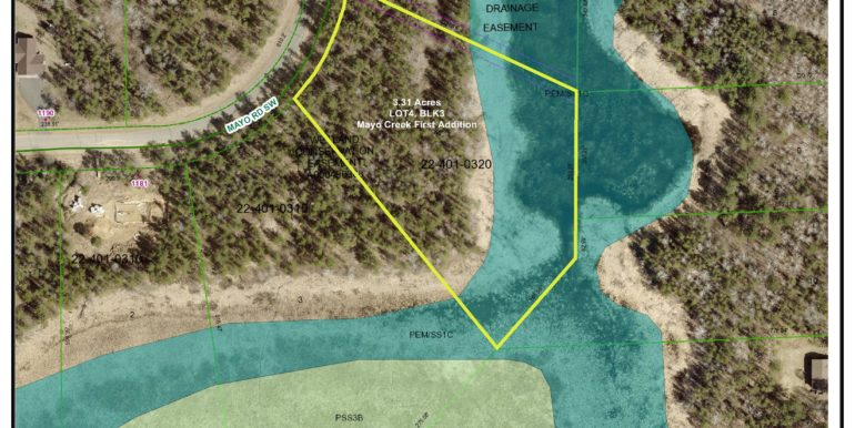 4A.-Wetland_CAS,LooLak,1362916,L4B3,MayoFA