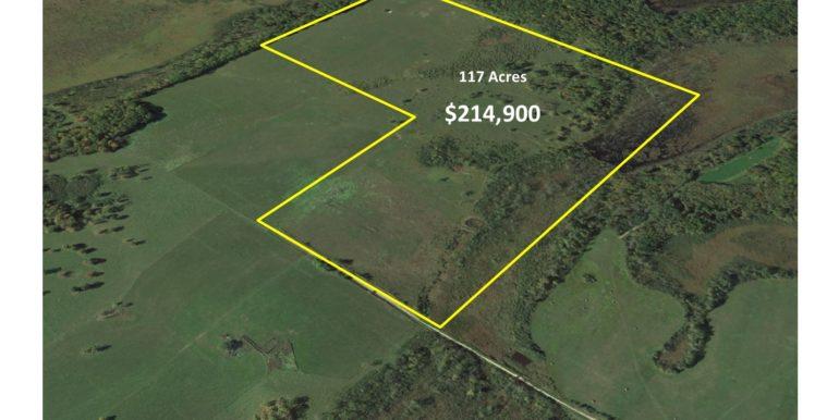 2-Aerial,CAS,Maple,1363009,SW4